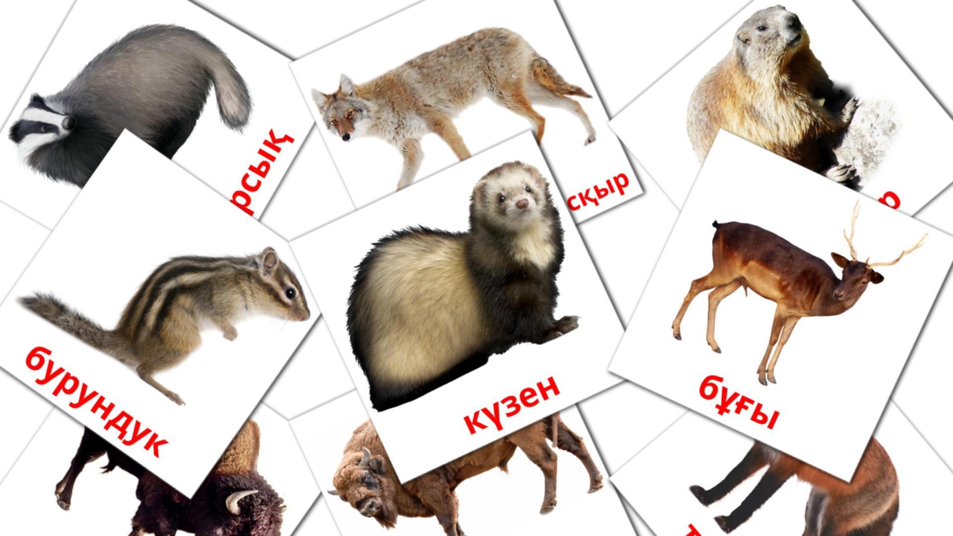 Карточи Домана Лесные животные