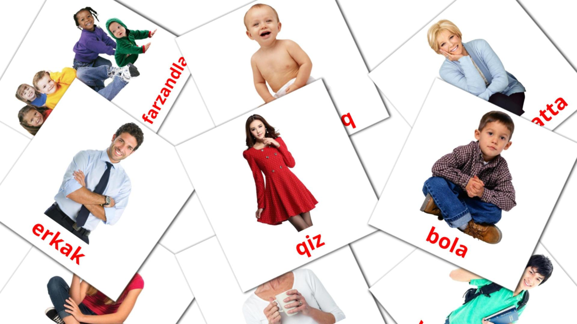 Stages flashcards