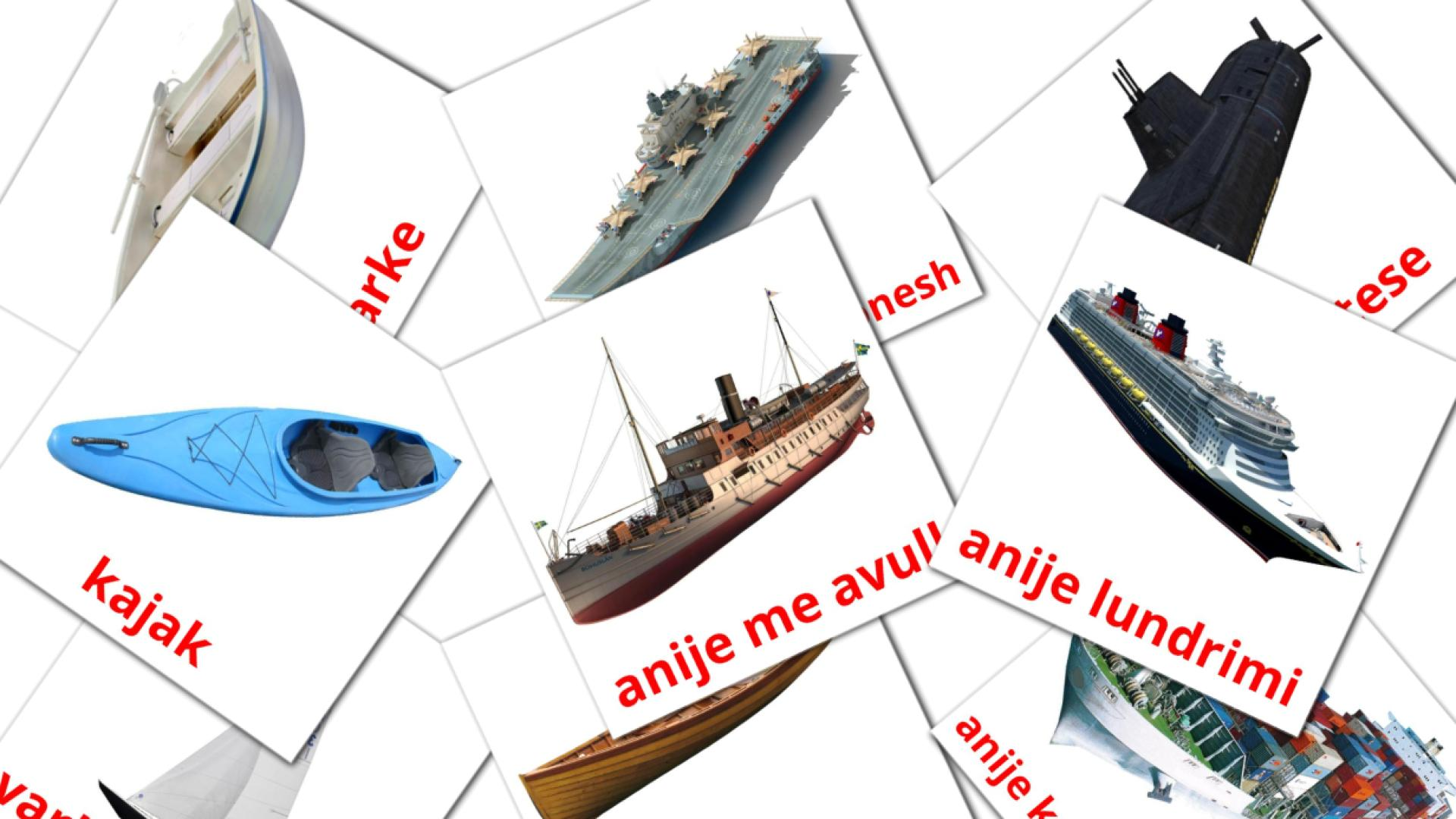 Water transport flashcards