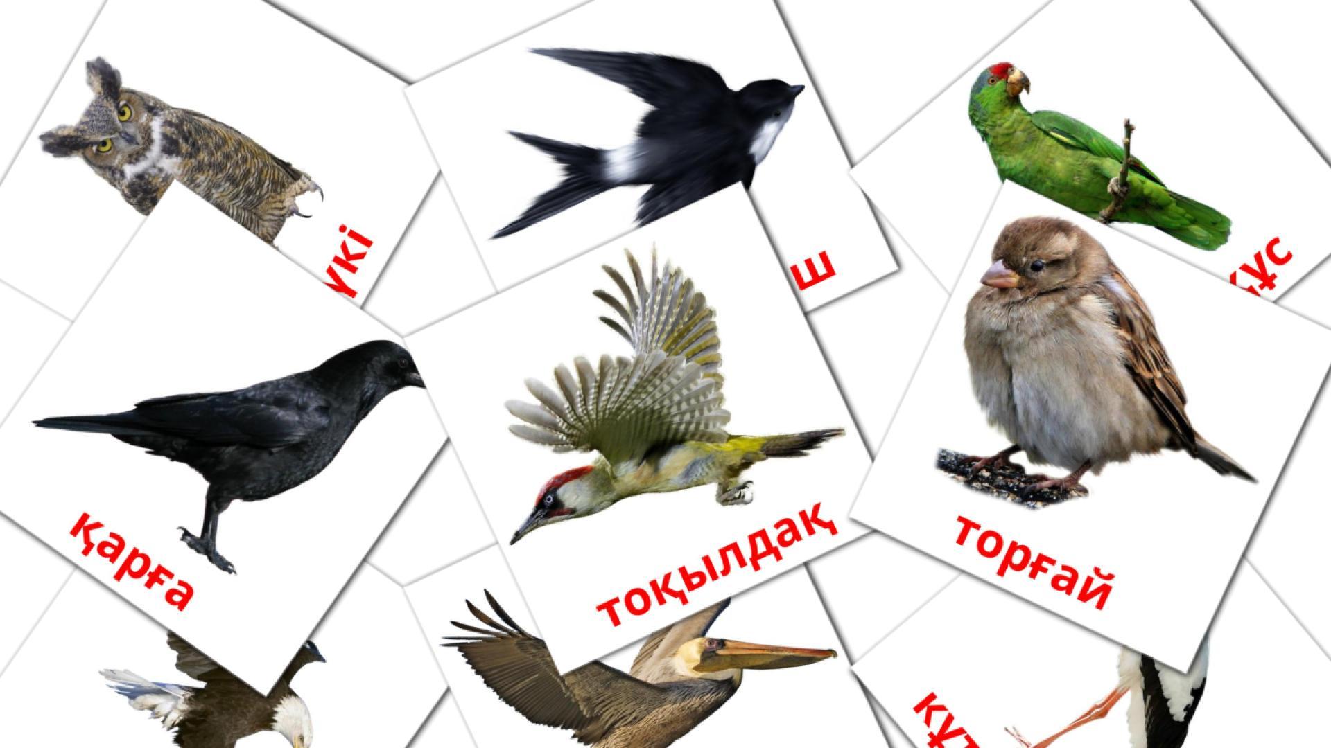 Карточи Домана Дикие птицы