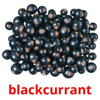 blackcurrant picture flashcards
