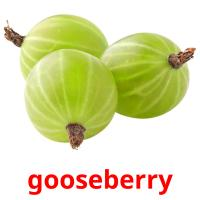 gooseberry picture flashcards