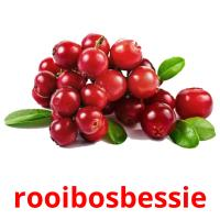 rooibosbessie card for translate