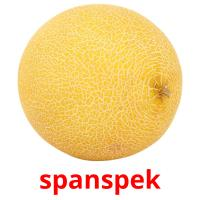 spanspek picture flashcards