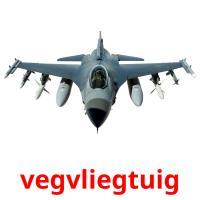 vegvliegtuig picture flashcards