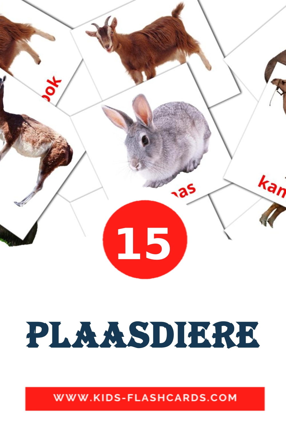 15 Plaasdiere Picture Cards for Kindergarden in afrikaans