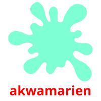 akwamarien picture flashcards
