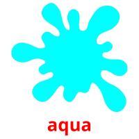 aqua picture flashcards