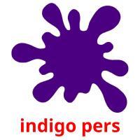 indigo pers picture flashcards