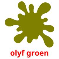 olyf groen picture flashcards