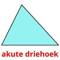 akute driehoek picture flashcards