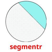 segmentr picture flashcards