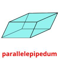 parallelepipedum picture flashcards