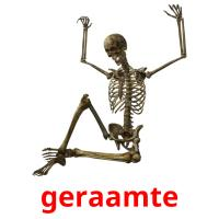 geraamte picture flashcards