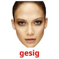 gesig picture flashcards