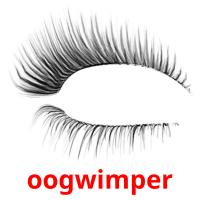 oogwimper picture flashcards
