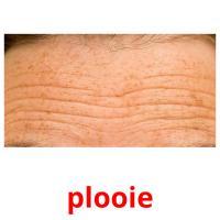 plooie picture flashcards