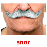 snor picture flashcards