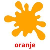 oranje picture flashcards