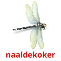 naaldekoker picture flashcards