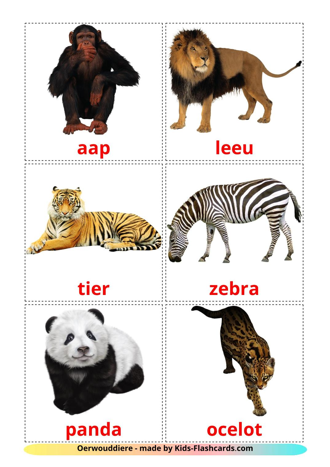Jungle animals - 21 Free Printable afrikaans Flashcards