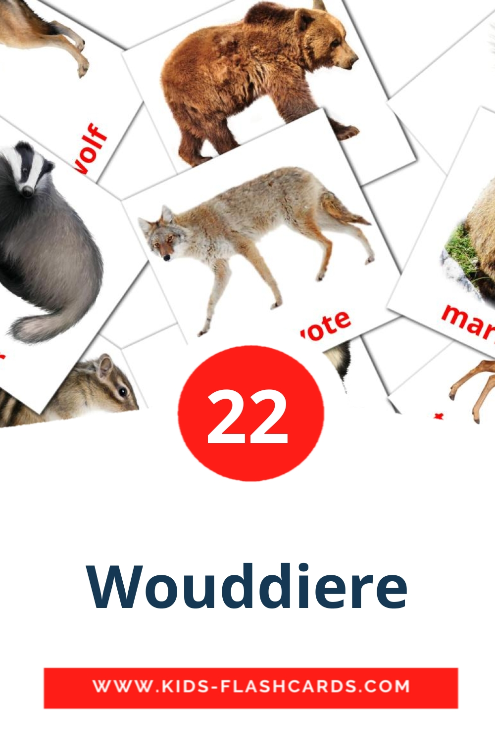 22 Wouddiere Picture Cards for Kindergarden in afrikaans