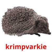 krimpvarkie picture flashcards