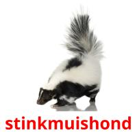 stinkmuishond picture flashcards