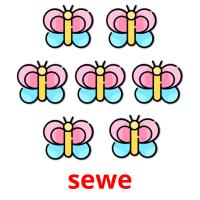 sewe picture flashcards