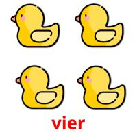 vier picture flashcards