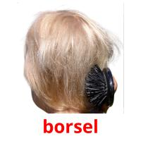 borsel picture flashcards