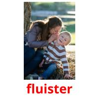 fluister picture flashcards