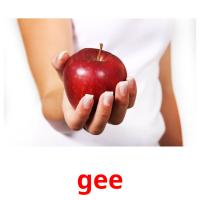 gee picture flashcards