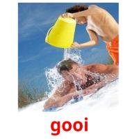 gooi picture flashcards