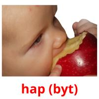 hap (byt) picture flashcards