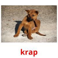 krap picture flashcards