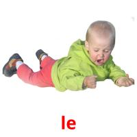 le picture flashcards