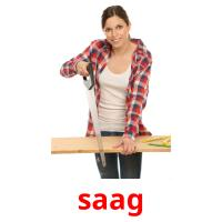 saag picture flashcards