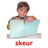 skeur picture flashcards