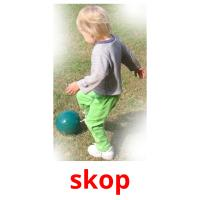 skop picture flashcards