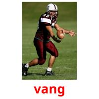 vang picture flashcards