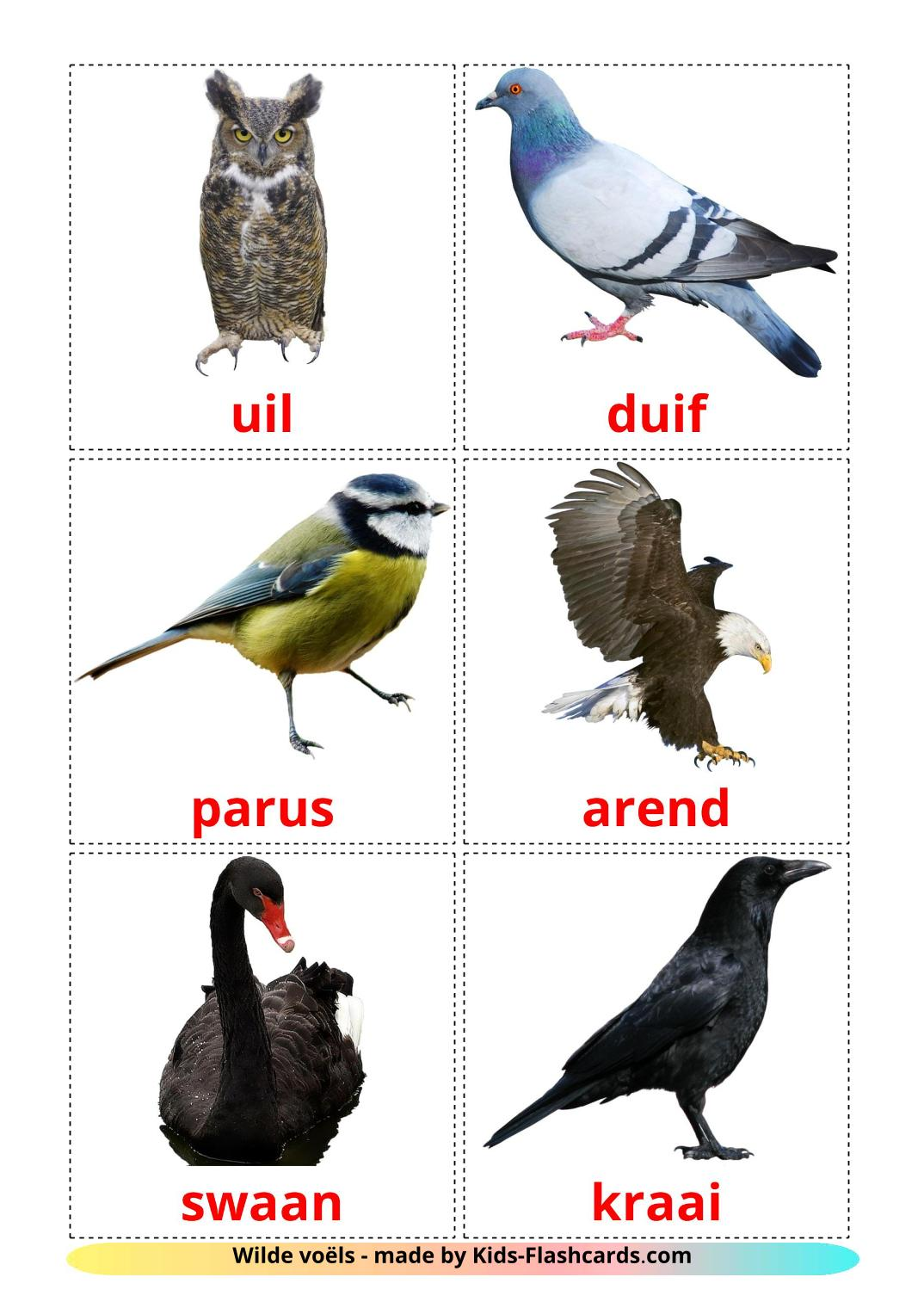 Wild birds - 18 Free Printable afrikaans Flashcards