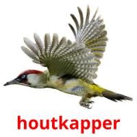 houtkapper picture flashcards
