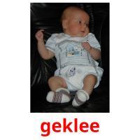 geklee picture flashcards