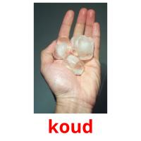 koud picture flashcards