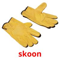 skoon picture flashcards