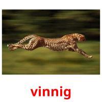 vinnig picture flashcards