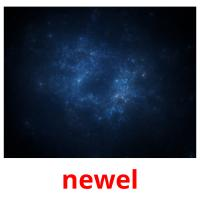 newel picture flashcards
