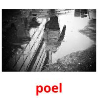 poel picture flashcards