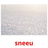 sneeu picture flashcards